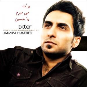 Amin-Habibi-www.pishvazcode.ir-01